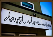 David Adams Salon Sign